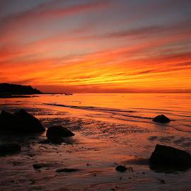 Last sunset of summer by Nick Haveran - Landscapes Sunsets & Sunrises ( sunset, lowtide, beach, rocks, capecod )