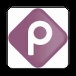 puntor recargas Icon