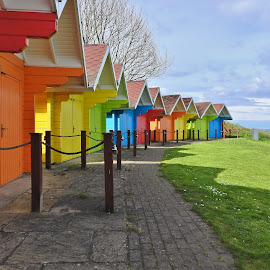 by Eloise Rawling - Buildings & Architecture Other Exteriors ( colourful, huts, beach huts )