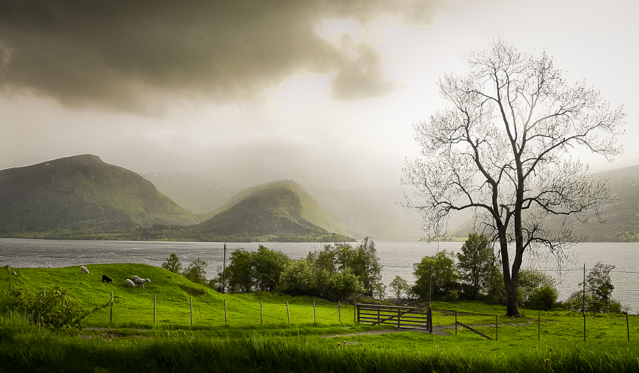 Irgendwo in Norwegen by Stefan Tiesing - Landscapes Mountains & Hills