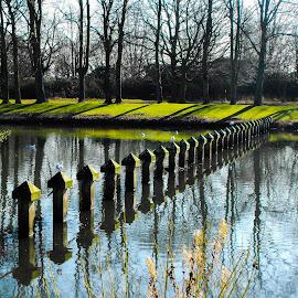 Nottingham University by Ian Harvey-Brown - City,  Street & Park  City Parks (  )