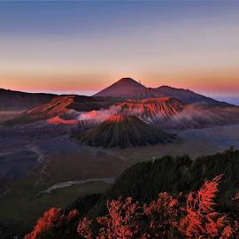 Bromo Dawn by Phil Bear - Landscapes Mountains & Hills ( crater, volcano, indonesia, volcanoes, java, sunrise, semeru, bromo, bromo tengger )
