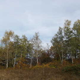 Есен by Georgi Kolev - Novices Only Landscapes ( небе., цветове., природа., ден., есенен. )