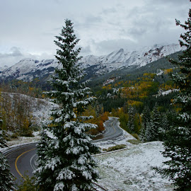 Million Dollar Highway by Justin Giffin - Transportation Roads ( mountains, fall colors, snow, colorado, trees, landscape, roads,  )