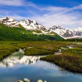 Alaska by Sagar Jogadhenu - Landscapes Prairies, Meadows & Fields ( water, mountains, sky, grass, alaska, landscape,  )