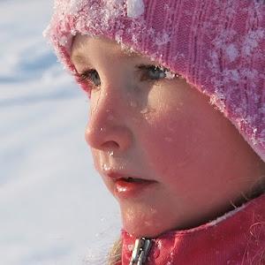 vinter2-0500.jpg