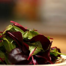 Baby Leaf Salad by Chrissie Barrow - Food & Drink Plated Food ( salad, baby leaf, red, green, food, plate, bokeh )