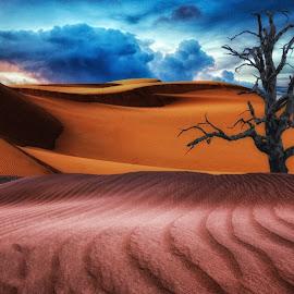 by Bruce Cramer - Landscapes Deserts (  )