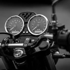 Moto Guzzi front by Tony Mortyr - Transportation Motorcycles ( meters, motorcycle )