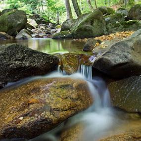 by Siniša Almaši - Nature Up Close Water ( water, up close, stream, nature, cascade, view, stones, landscape, rocks, river )