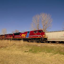 A&M  71 by Steve Tharp - Transportation Trains