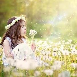 Dandelion fuzz by Darya Morreale - Babies & Children Children Candids ( flower field, girl, fuzz, summer, sunlight, dandelions )