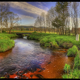 on the border by Petr Klingr - Landscapes Prairies, Meadows & Fields ( hdr, trees, morning, border, river )