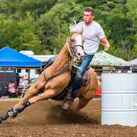 Turning on a Dime by Jim Sommers - Animals Horses ( horseback, barrel racing, horses, horse, two mile creek )