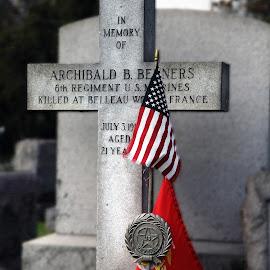 by Eva Pastor - City,  Street & Park  Cemeteries ( veteran, cemetery, gravestone,  )