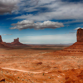 Monument Valley by Nancy Merolle - Landscapes Deserts ( monument valley, mesas, desert, indian, usa, native american, scrub, westerns, vacation, utah, cowboys, arizona, apachi, john wayne, brush, west,  )