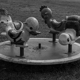 Old Time Playground by Thomas Shaw - City,  Street & Park  City Parks ( merry go round, playground, south of the boarder, animals, metal, grass, black and white, hotel, south carolina )
