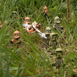 Troopers in the Grass by Gerald Glaza - Artistic Objects Toys ( troopers, star wars, clonetroopers, jar jar, lego )