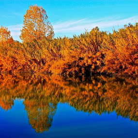 Pure autumn mirror by Fabrizio Reali - Landscapes Waterscapes ( water, mirror, canon, reflection, nature, autumn,  )