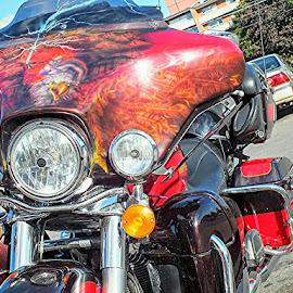 by Ivka Njegac - Transportation Motorcycles (  )