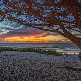 by Dan Herman - Landscapes Beaches