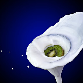 Milk Splash! by Ramakant Sharda - Abstract Water Drops & Splashes ( highspeed, splash, speed, kiwi, milk, high, kiwifruit )