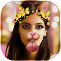 Download Snap Photo Editor Stickers APK on PC