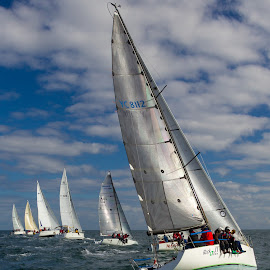 Their off! by Lyonswood Photography - Sports & Fitness Other Sports ( yachting, winterrace, race )