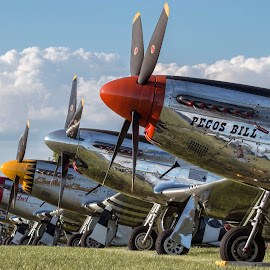 Mustang Mania by Patrick Barron - Transportation Airplanes ( mustang, p-51, oshkosh, eaa, airventure )