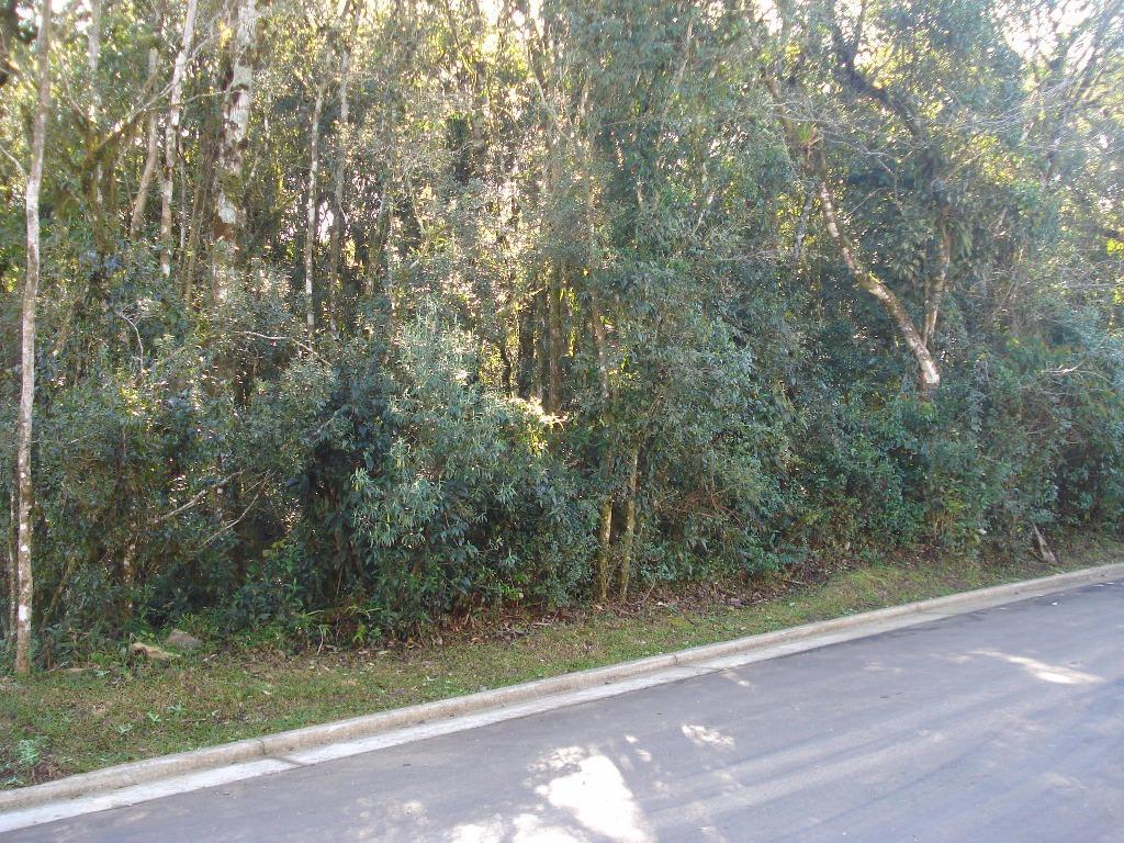Terreno à venda em Vila  Suíça, Gramado - RS