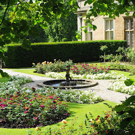 Garden With Small Fountain  by Andy Walker - Nature Up Close Gardens & Produce ( statue, tree, leaves, garden, flower )