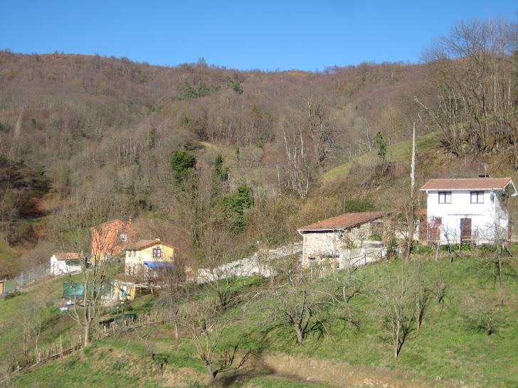 Pumarín