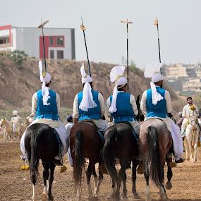 Tent Pegging by Tahir Sultan - Animals Horses ( #tentpegging, #nikon, #islamabad, #horse, #colorofpakistan,  )