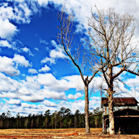 Barn and Clouds by Kevin Hill - Landscapes Cloud Formations ( clouds, barn, tabacco, trees, cloudscape,  )