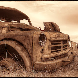 Forgotten Legend by Daniel Johnson - Transportation Automobiles ( history, corroded, legendary, rustic, antique )
