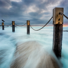 The Watcher by Rebecca Ramaley - Landscapes Waterscapes ( bird, clouds, maroubra, mahon pool, australia, long exposure, sunrise, sydney )