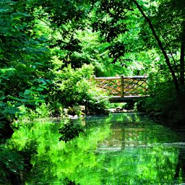 Bridge by Hal Gonzales - City,  Street & Park  City Parks ( pond, reflection, peace, bridge, peaceful,  )