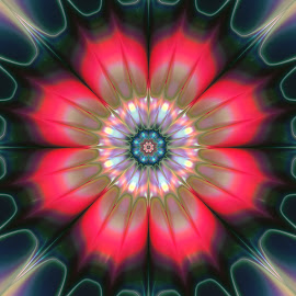 Flower 12 by Cassy 67 - Illustration Abstract & Patterns ( abstract, wallpaper, digital art, harmony, bloom, flowers, fractal, digital, fractals, flower )