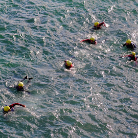Coasteers of Cornwall by DJ Cockburn - Sports & Fitness Swimming ( england, coastline, cornwall, wetsuit, recreation, shore, coasteering, yellow helmet, water, sea, adventure, coast, swimming, atlantic, newquay, ocean, uk, action, sport, swim )