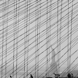Lady Liberty by VAM Photography - Buildings & Architecture Statues & Monuments ( brooklyn bridge, statue, statue of liberty, b&w, architecture )