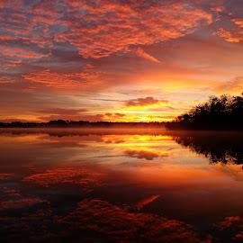 Sunrise by Lynn Kohut - Instagram & Mobile Other ( colorful, florida, mobile phone, sunrise, morning, early morning,  )