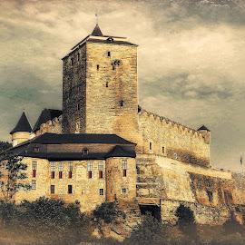 castle by Tomasz Marciniak - Buildings & Architecture Public & Historical