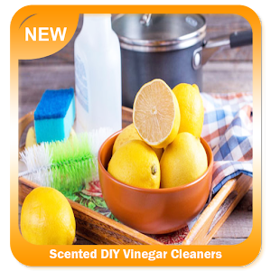Download Scented DIY Vinegar Cleaners for Windows Phone