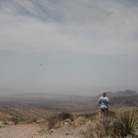 Taking it In by Reagan Pensenstadler - Landscapes Deserts ( bigbend, sightseeing, desrt, nationalparks, observe )