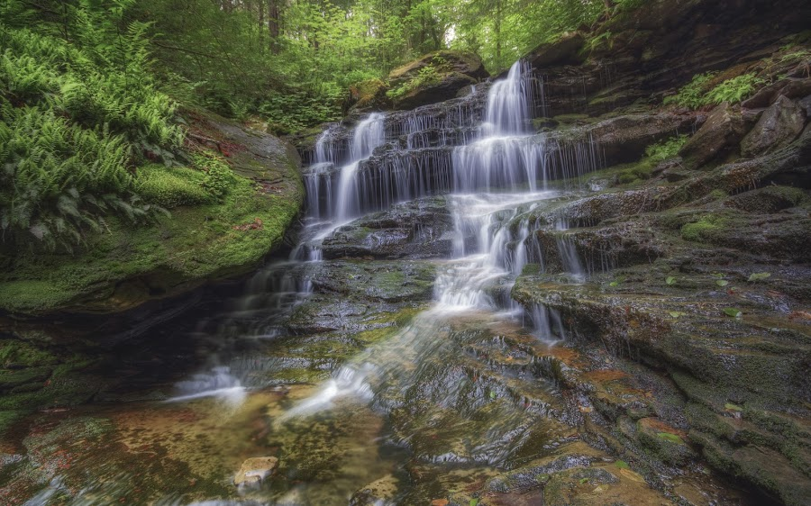 Forgotten Falls in Spring by Aaron Campbell - Landscapes Caves & Formations ( luzerne county, hdr, state park, waterfall, moss, cascades, pennsylvania, ferns, slow shutter, fairmount township, ricketts glen,  )