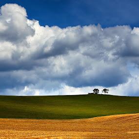 he and she by Matej Kováč - Landscapes Prairies, Meadows & Fields (  )