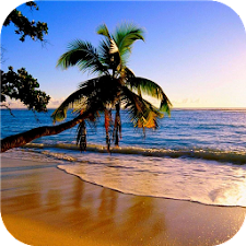 Paradise beach Live wallpapers