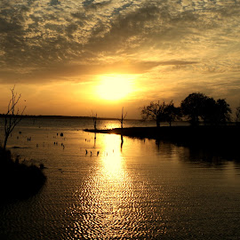 Lake Fork by Janet Jordan - Novices Only Landscapes ( water, reflection, sunset, lake, landscape )