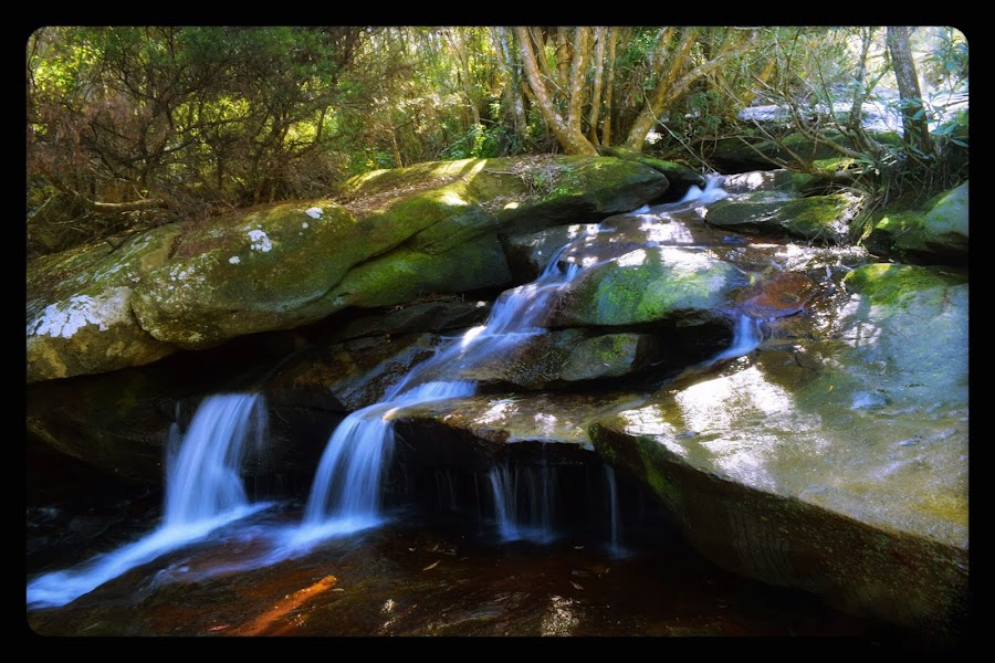 Falls by Amanda Daly - Novices Only Landscapes