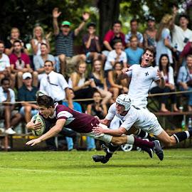 Scored!! by Marc de Chalain - Sports & Fitness Rugby ( scored, urgby, kearsney, try, delight )